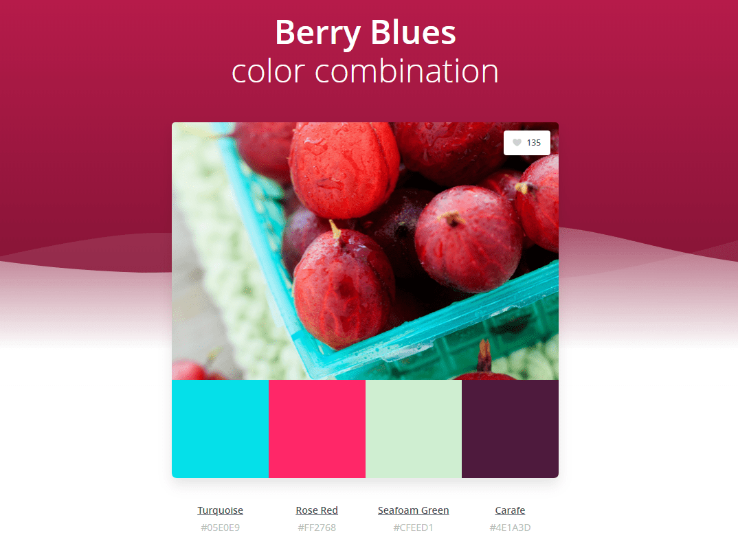 Explore Canva S Design Wiki Try Colors By Canva