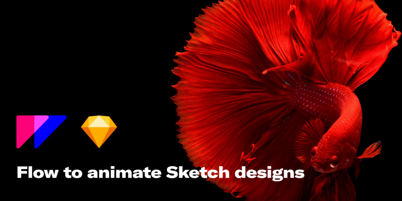 Flow is a tool to animate and export Sketch designs