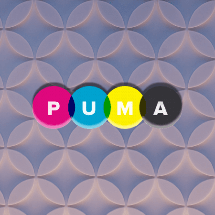 Puma is a Ruby web server built for speed and parallelism